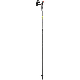 LEKI Spin Poles grey/black